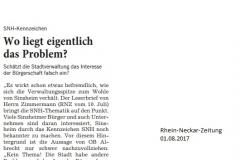 Leserbrief Peter Hirsch 01082017